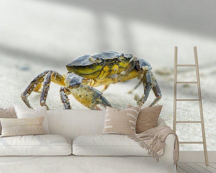 Sfeerimpressie behang: Krab op het strand van Mark Bolijn