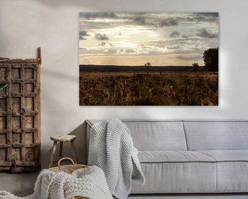 wolken over de veluwe van Tania Perneel