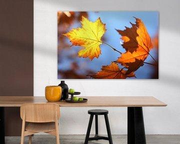 The Yellow Leaf van Cornelis (Cees) Cornelissen