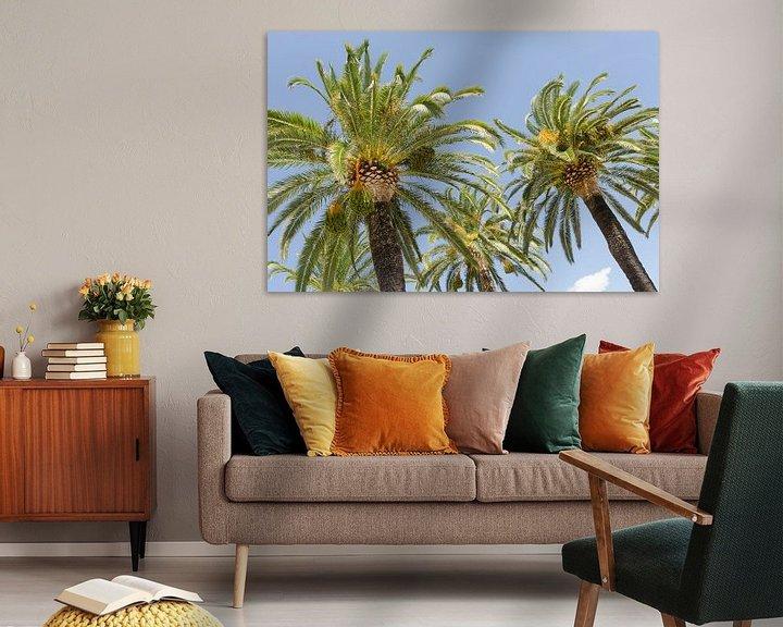 Sfeerimpressie: Palmbomen in Italië van Mark Bolijn