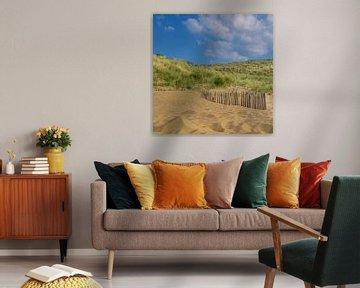 Strand en duinen van Patrick Herzberg