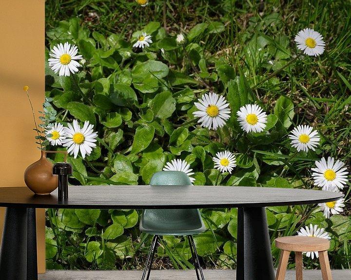 Sfeerimpressie behang: madeliefjes in het gras van Frans Versteden