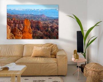 Bryce Canyon, United States van Colin Bax