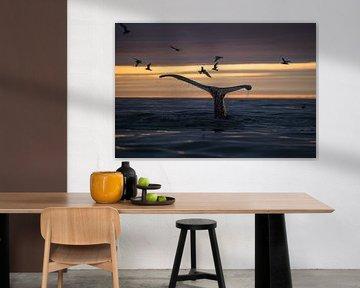 Ein Wal versteckt sich, während die Mittsommernachtssonne den Himmel warm färbt. von Koen Hoekemeijer