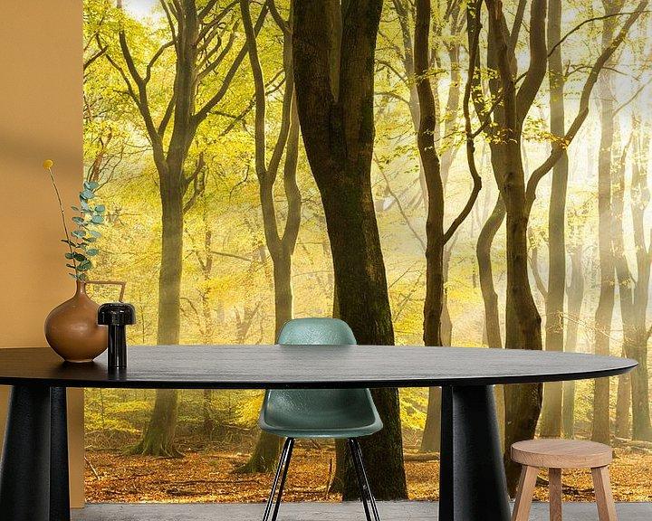 Sfeerimpressie behang: Bomen in zacht ochtend licht van Albert Lamme