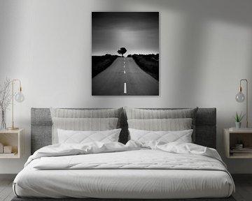 Solstice I van Frank Hoogeboom