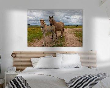 Moeder en Kind Fjord paard van Bram van Broekhoven