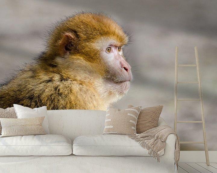Sfeerimpressie behang: Portret van een aap van Mark Bolijn