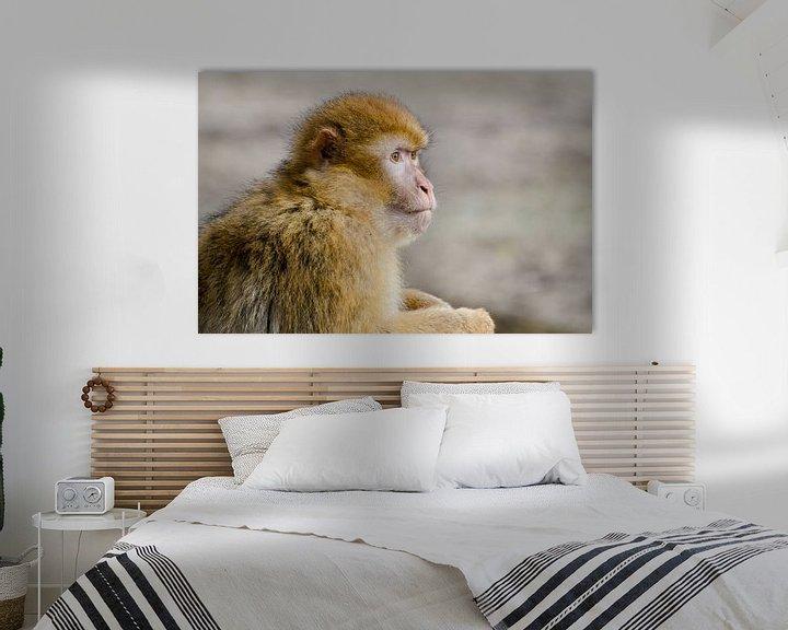 Sfeerimpressie: Portret van een aap van Mark Bolijn