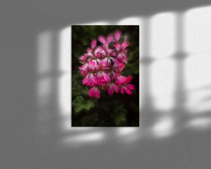 Sfeerimpressie: Geranium.. van ColorsofNaturePhotography Jeanet Groenewoud