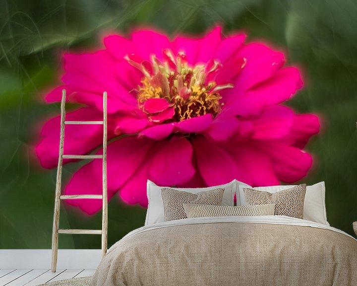 Sfeerimpressie behang: Pink van ColorsofNaturePhotography Jeanet Groenewoud