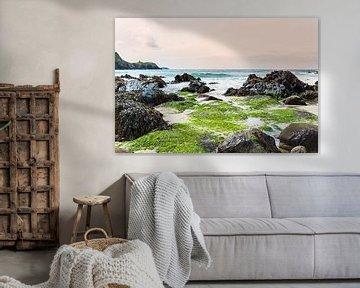 Kleuren op het strand van Anouschka Hendriks