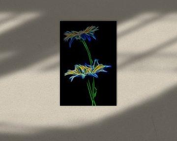 feurige Blume von Dick Jeukens