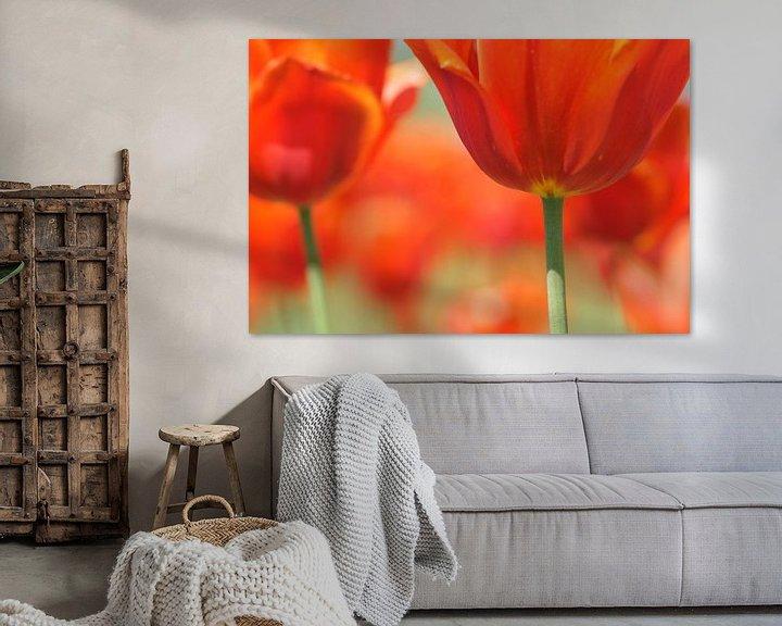 Sfeerimpressie: Red Tulips van Carla Mesken-Dijkhoff