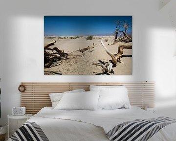 Death Valley, eenzaam en verlaten sur Hans Jansen