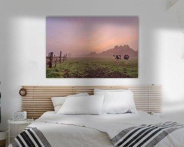 Foto eines atmosphärischen nebligen bunten Sonnenaufgangs auf einem flämischen Gebiet, eine Wiese mi von Fotografie Krist / Top Foto Vlaanderen