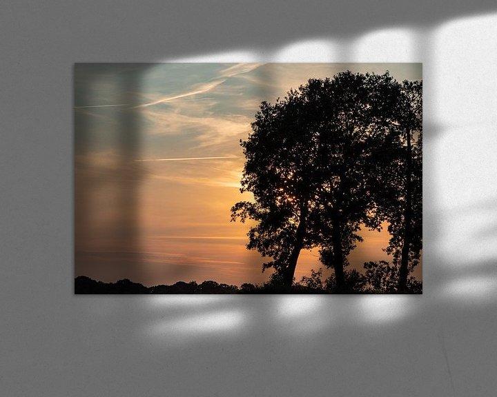 Beispiel: Baumschattenbild und -sonnenuntergang. von Anjo ten Kate
