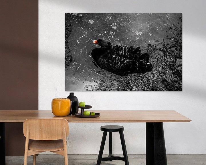 Sfeerimpressie: Zwarte zwaan van Daniëlle Beckers