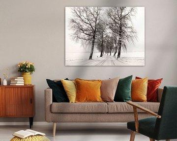 Winterliche Straße von Lena Weisbek