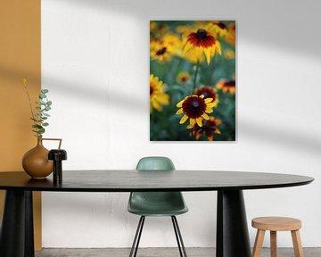 Blumen von MSP Canvas