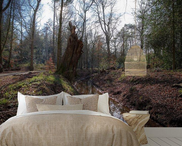 Beispiel fototapete: Bächlein im Wald bei Eelde-Paterswolde von Sander de Jong