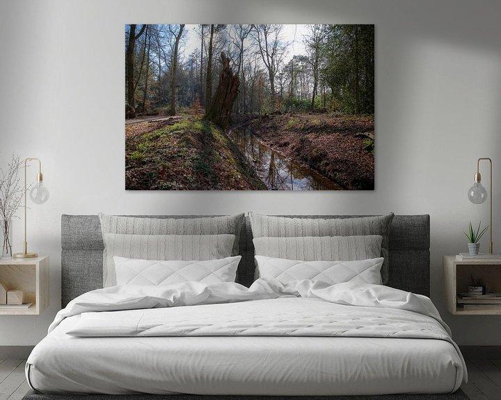 Beispiel: Bächlein im Wald bei Eelde-Paterswolde von Sander de Jong