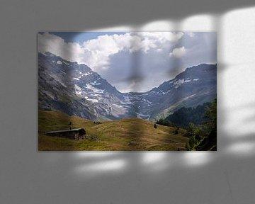 Gletscher in den Schweizer Alpen