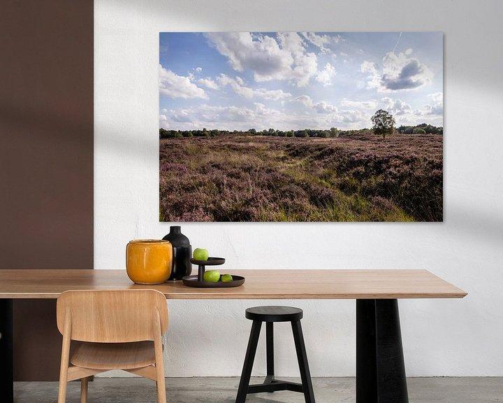Beispiel: Heide auf dem Gasterse Duinen von Sander de Jong