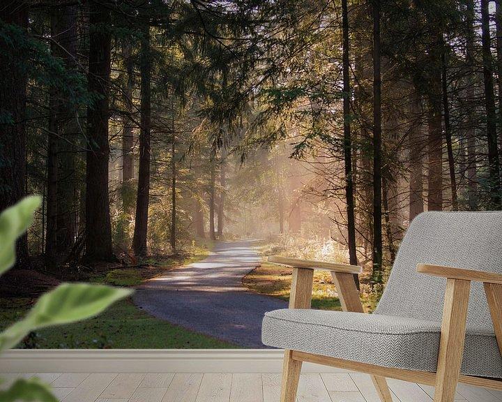 Beispiel fototapete: Morgenlicht im Wald von Tania Perneel