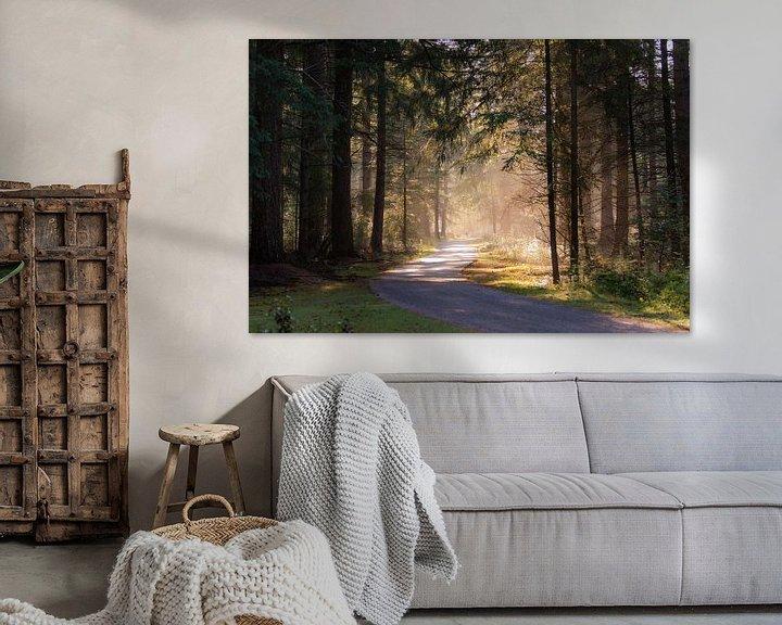 Beispiel: Morgenlicht im Wald von Tania Perneel