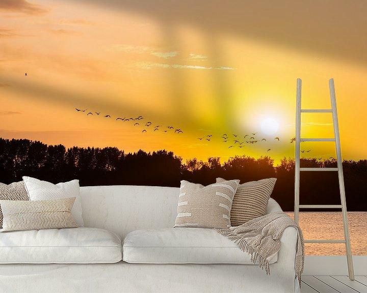 Beispiel fototapete: fliegende Gänse von Tania Perneel