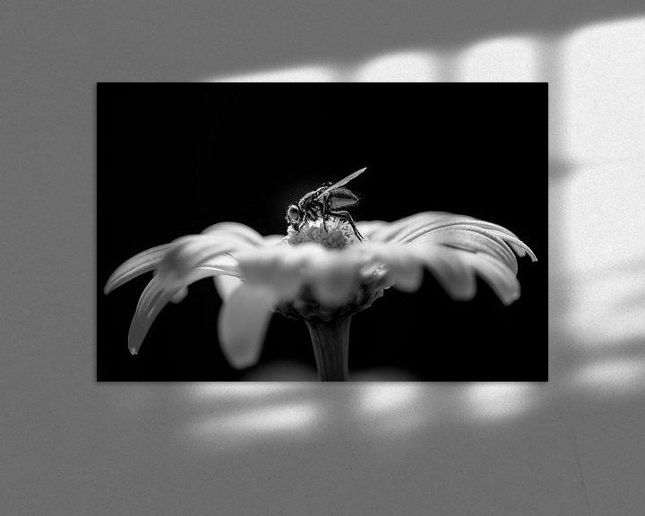 Sfeerimpressie: Vlieg op een bloem van Mark Bolijn