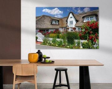 Amrum - Friesenhaus mit wunderschönem Blumengarten von Reiner Würz / RWFotoArt