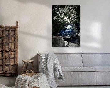 Fiat 500 bedolven door Oleander van Karel Ham