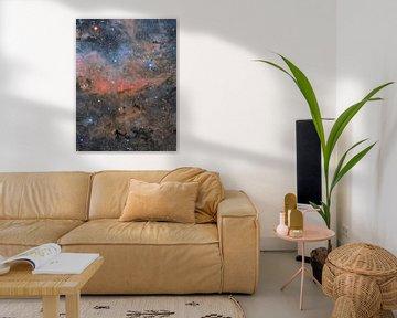 Raum von André van der Hoeven