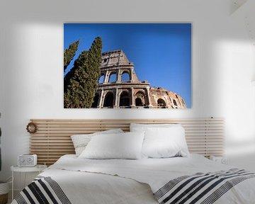 Kolosseum mit Bäumen