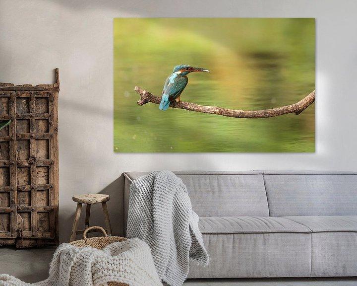 Sfeerimpressie: IJsvogel van Erik Veltink