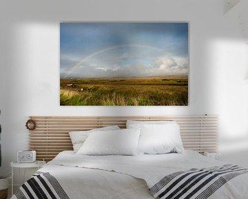 Regenboog over turfveld op Islay van Femke Klaver