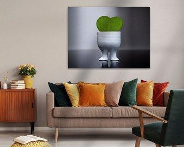 Een liefde voor groen van Stijn Cleynhens