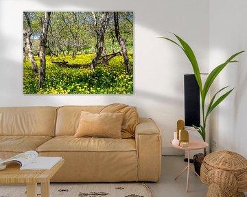 Hängematte auf der Blumenwiese von Stijn Cleynhens