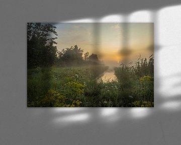 een mistige zonsopkomst van Frans Bruijn
