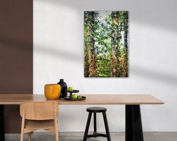 Bos van Shirley Douwstra