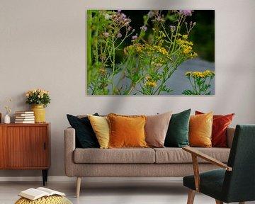 Blumenwiese von Joerg Keller