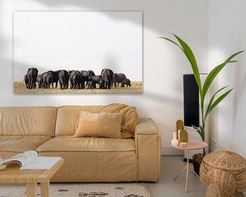 Groupe d'éléphants dans le parc Etosha Namibie, Afrique sur Tjeerd Kruse
