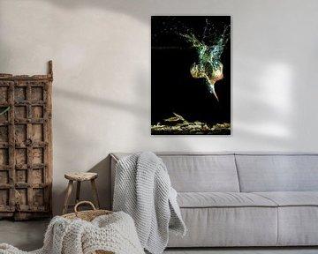 Eisvogeltauchgänge für Fische unter Wasser von Jeroen Stel