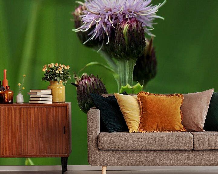 Impression: Fleur de chardon sur Paul Franke