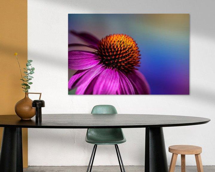 Sfeerimpressie: Zonnehoed tegen gekleurde achtergrond van René van der Horst