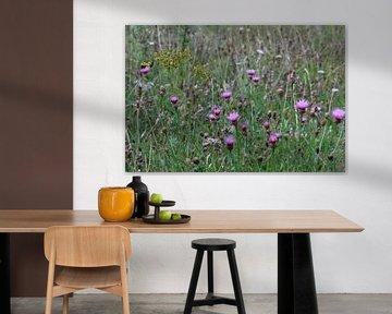 Wildblumen von Shirley Douwstra