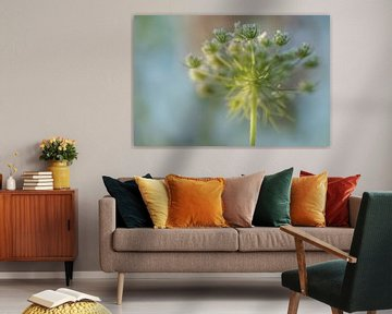 Fieldbloem von Moetwil en van Dijk - Fotografie