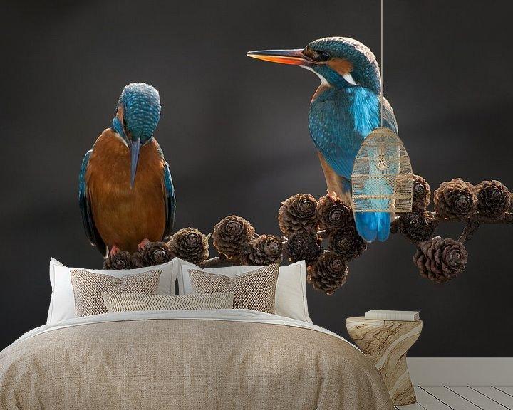 Beispiel fototapete: Paar Eisvögel auf Fichtenzweig im Wurf von Jeroen Stel